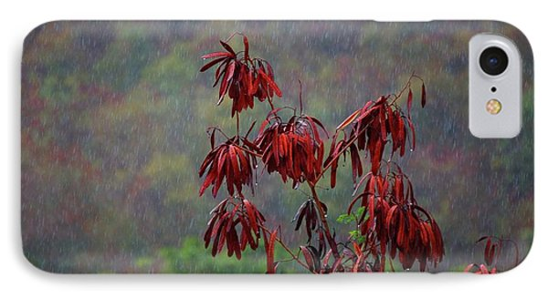 Red Tree In The Rain IPhone Case by Michael Thomas