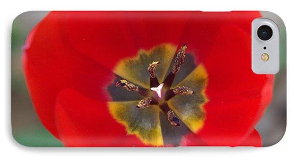 Red Tulip In 3d Phone Case by Liz Allyn