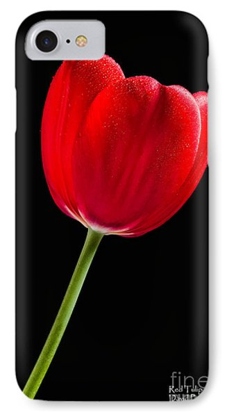 IPhone Case featuring the photograph Red Tulip No. 1  - By Flower Photographer David Perry Lawrence by David Perry Lawrence