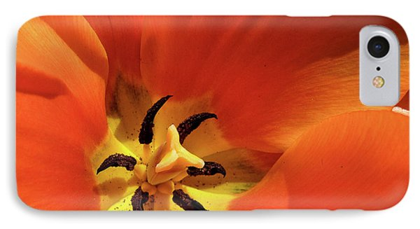 IPhone Case featuring the photograph Red Tulip by Susan Cole Kelly