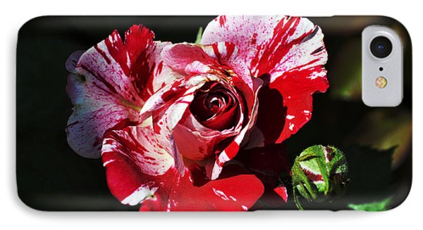 Red Verigated Rose IPhone Case by Clayton Bruster