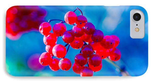 IPhone Case featuring the photograph Red Viburnum Berries by Alexander Senin