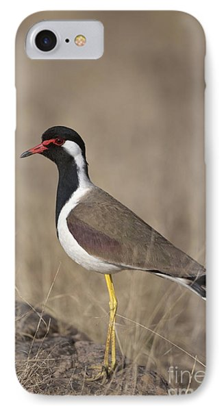 Red-wattled Lapwing IPhone 7 Case by Bernd Rohrschneider/FLPA