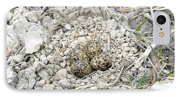Red-wattled Lapwing Nest IPhone 7 Case by Fletcher & Baylis