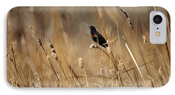 Red Winged Blackbird IPhone Case by Ernie Echols