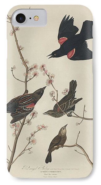 Red-winged Starling IPhone 7 Case