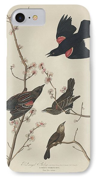Red-winged Starling IPhone 7 Case by Rob Dreyer