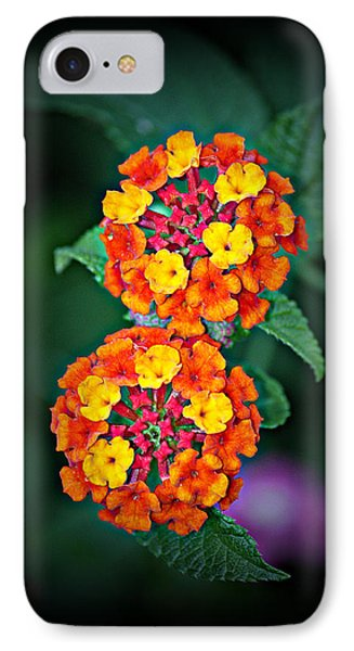 IPhone Case featuring the photograph Red Yellow And Orange Lantana by KayeCee Spain