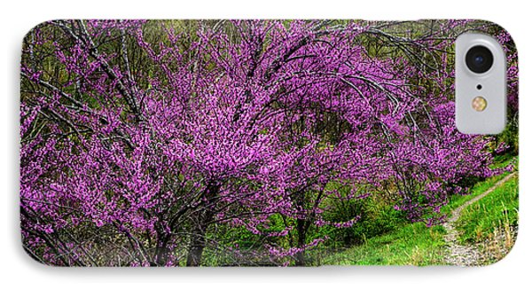 IPhone Case featuring the photograph Redbud And Path by Thomas R Fletcher