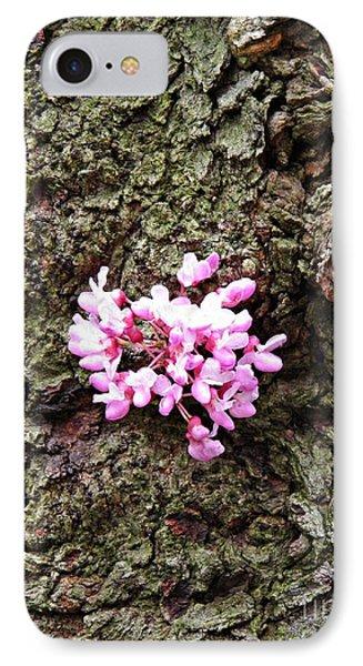 Redbud Flowers 1  IPhone Case by Sarah Loft