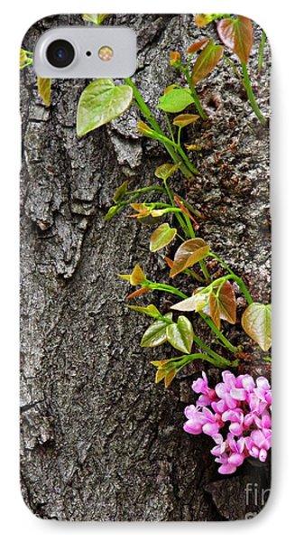 Redbud Flowers 2 IPhone Case by Sarah Loft