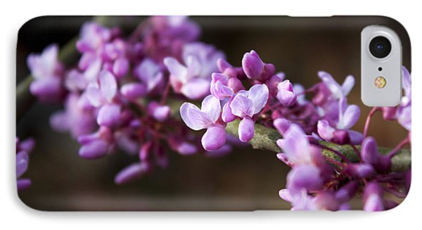 IPhone Case featuring the photograph Redbuds In March by Jeff Severson