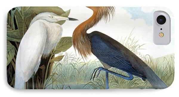 Reddish Egret, Phone Case by Granger