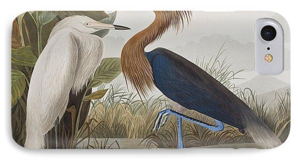Reddish Egret IPhone Case by John James Audubon