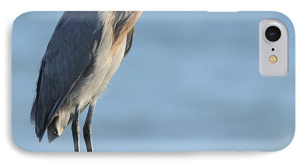 IPhone Case featuring the photograph Reddish Egret Perched On A Jetty Rock by Bradford Martin