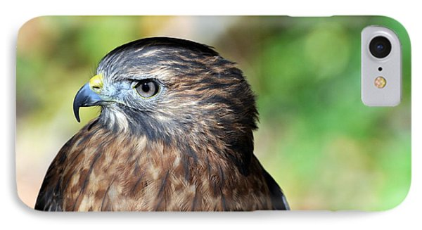 Redtail Phone Case by Marty Koch