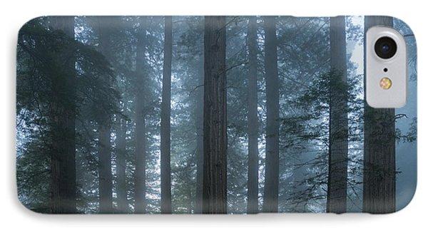 Redwood Mist IPhone Case
