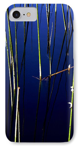 Reeds Of Reflection Phone Case by Chris Brannen