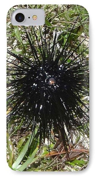Reef Life - Sea Urchin 2 IPhone Case