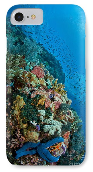 Reef Scene With Corals And Fish Phone Case by Mathieu Meur