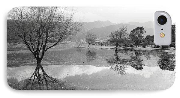 Reflected Trees Phone Case by Gaspar Avila