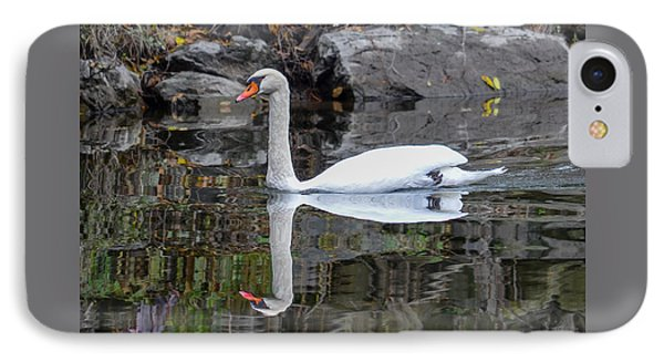 Reflecting Mute Swan IPhone Case