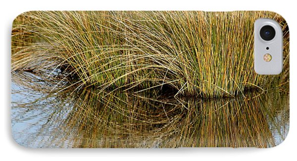 Reflecting Reeds Phone Case by Marty Koch