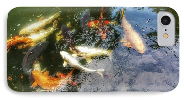 Reflections And Fish 6 IPhone Case