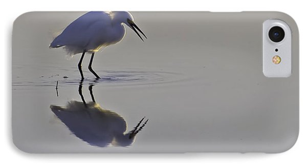 Reflections IPhone Case by Brian Wright