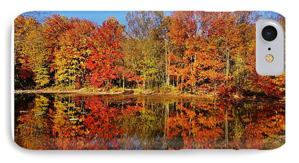 Reflections In Autumn IPhone Case