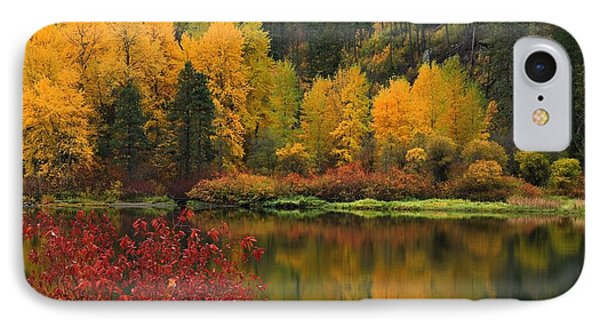 Reflections Of Fall Beauty IPhone Case by Lynn Hopwood