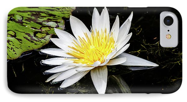 Reflective Lily IPhone Case