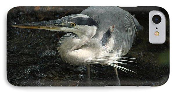 Regal Heron Phone Case by Theresa Willingham