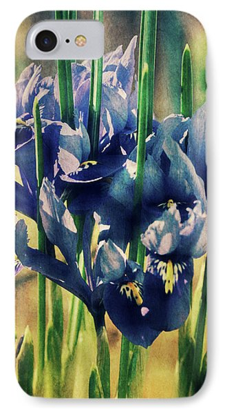 IPhone Case featuring the photograph Regal Splendour  by Connie Handscomb