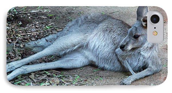 IPhone Case featuring the photograph Relaxing Kangaroo by Miroslava Jurcik