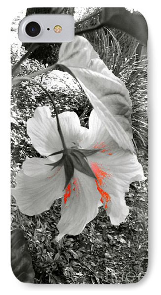 Remembrance IPhone Case by Cathy Dee Janes