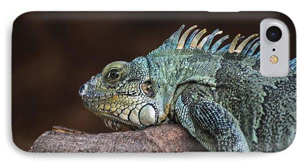 Reptile IPhone Case by Daniel Precht