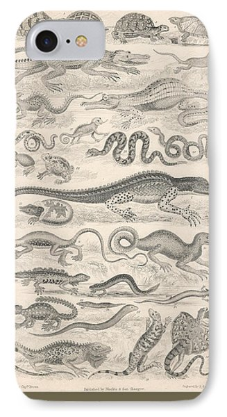Reptiles IPhone Case by Rob Dreyer