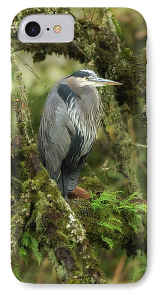 IPhone Case featuring the photograph Resting Great Blue Heron by Angie Vogel