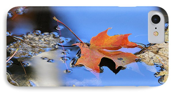 IPhone Case featuring the photograph Resting On Gold And Blue by Doris Potter