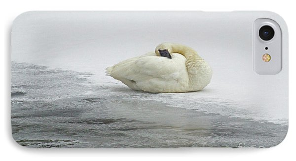 Resting Swan-signed-#1314 IPhone Case by J L Woody Wooden