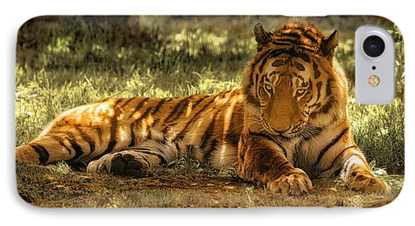 Resting Tiger IPhone Case by Chris Boulton