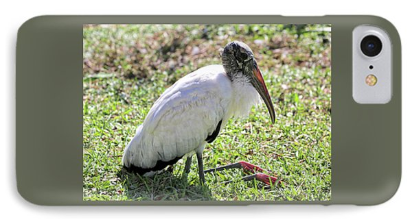 Resting Wood Stork IPhone Case by Carol Groenen