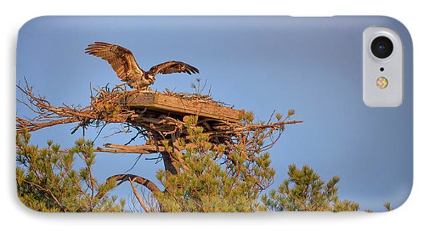 Returning To The Nest IPhone Case by Rick Berk