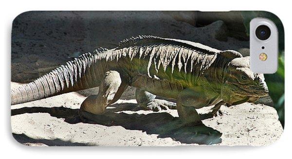 IPhone Case featuring the photograph Rhinoceros Iguana by Miroslava Jurcik
