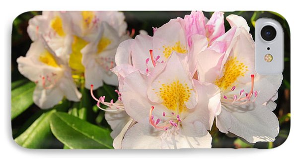 Rhododendron Phone Case by Catherine Reusch Daley