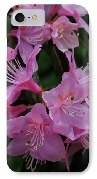 Rhododendron In The Pink Phone Case by Laddie Halupa