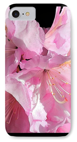 Rhododendron On Black IPhone Case