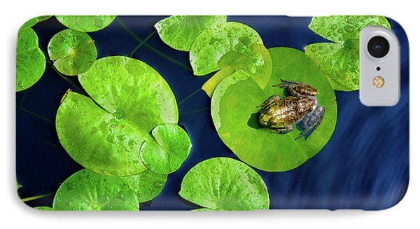 Ribbit IPhone Case by Greg Fortier
