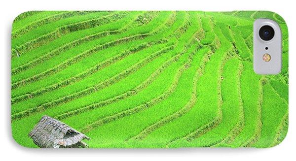 Rice Field Terraces Phone Case by MotHaiBaPhoto Prints
